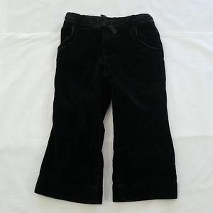 Black Velvet Toddler Pants